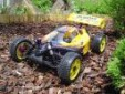 off_road_buggy_18.jpg