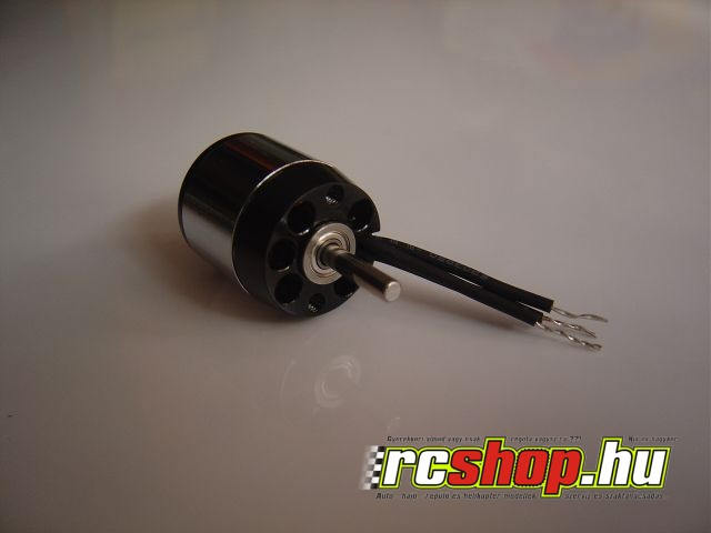 rcshop_profi_brushless_motor-1.jpg